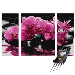 paint by numbers orchideen incl brush