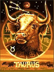 Malen nach Zahlen Sternzeichen / Tierkreiszeichen Stier 18x24